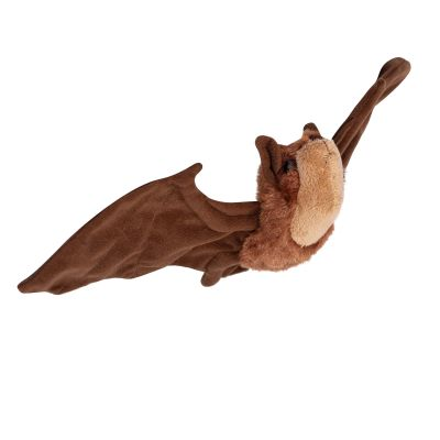 Mexican Free-Tailed Bat Plush Toy